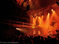 lonely-the-brave-pinguins-in-paradiso-2015-fotono-010