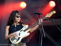 the-last-internationale-pinkpop-2015-fotono_015