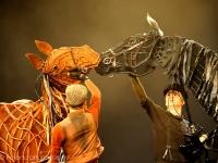 warhorse-lowlands-2014_-0101