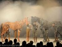 warhorse-lowlands-2014_-041