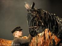 warhorse-lowlands-2014_-061